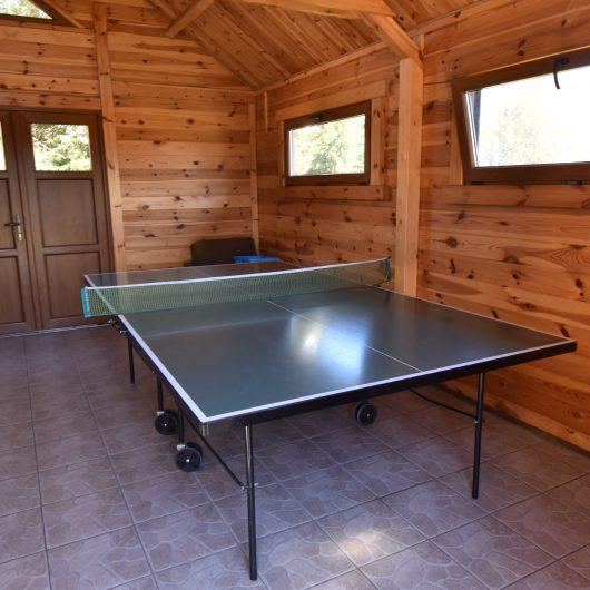 Stół do Pingponga